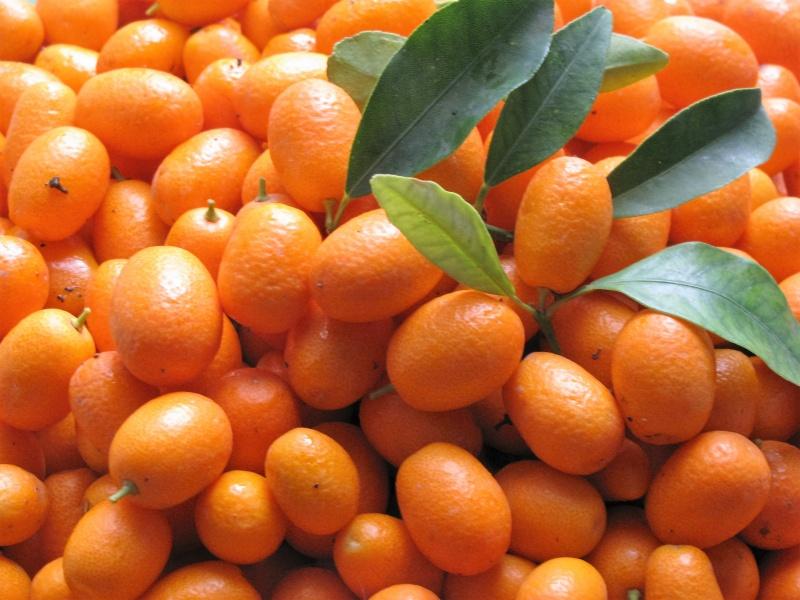 Κουμκουάτ ή ''χρυσό πορτοκάλι''